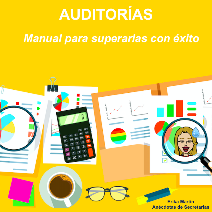 manual auditorias