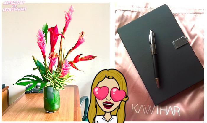 Kiwa Concept y Kawthar Concept